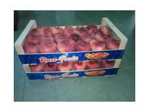 Russ-Fruit